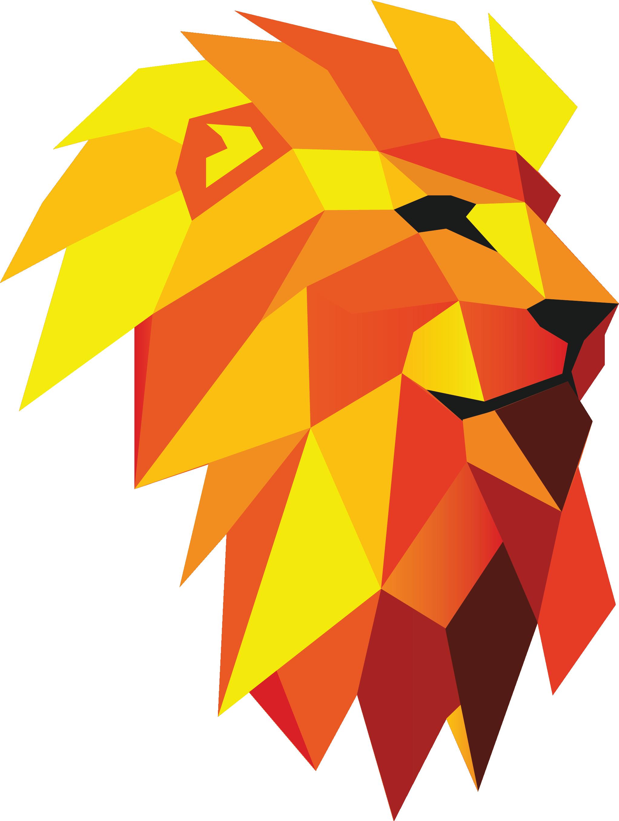 Lioner     Digitális ügynökség - Aszucar parner